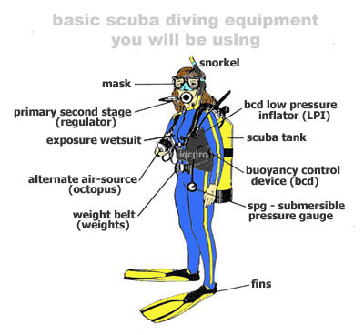 Image result for scuba gear diagram